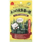 ◇ペティオ ネコの元気草の種 15g×5本