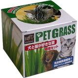 ◇エイムクリエイツ 犬と猫が好きな草 栽培セット
