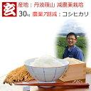 玄米 30kg 送料無料 農薬7割減栽培 1等米 コシヒカリ 丹波 篠山産 減農薬米 産年:令和元年 生産者:田渕真也※精米選べます