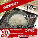 【クーポン割引対象商品】,お米 10kg 送料無料28年産 島根県産 つや姫 減農薬 玄米 10kg