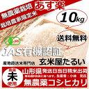 米 10kg 送料無料 【JAS有機無農薬】無農薬 玄米 農...