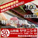 28年産 山形県 減農薬栽培ササニシキ 玄米10kg送料無料【生産者:小林 亮氏】