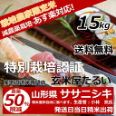 28年産 山形県 減農薬栽培ササニシキ 玄米15kg送料無料【生産者:小林 亮氏】