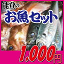 七尾湾で獲れた能登の新鮮お魚セット1000円