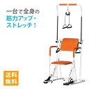 ぶら下がり健康器 筋トレ マルチホームトレーナー YMHT-250 ヤマトヒューマン【エクサ
