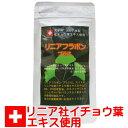 イチョウ葉エキス+DHA リニアフラボン 90粒 いちょう葉 +DHA スイス リニア社 イチョ