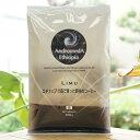 アンドロメダエチオピアコーヒー/豆