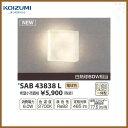 コイズミ照明 ブラケットライト 薄型ブラケットライト 白熱球60W相当 SAB43838L