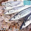 さんま 気仙沼 新さんま【丸繁商店】 (130g〜 10尾)【送料無料】 気仙沼 三陸 秋刀魚