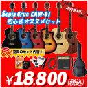アコースティックギター アコギ エレアコ入門セット S