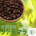 有機栽培 グァテマラ SHB 200g(豆)x1個