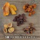 ドライフルーツ 砂糖不使用 無添加 5種 ゴロゴロ ドライミックス 300g 送料無料 ノンオイル