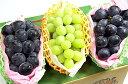 果物 ギフト シャインマスカット & 種無し ピオーネ & ナガノパープル 究極の贅沢 ぶどう セット