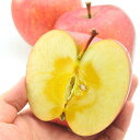 長野県産 りんご お徳用 サンふじ りんご 10kg 無袋栽培品種 [訳あり]