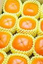 果物 ギフト 種なし柿 大玉 柿 1箱 12個 [送料無料]