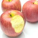 小粒 りんご お徳用 りんご バラ詰め 5kg 旬の産地より...