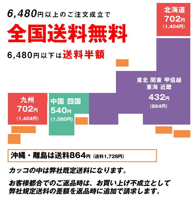 【最大2,000円OFFクーポン配布中】【サン...の紹介画像3