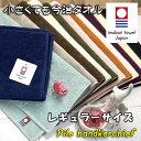 今治タオル ハンカチ タオルハンカチ パイルハンカチ 日本製 今治 レギュラーサイズ ミニタオル 2