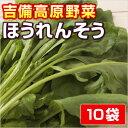 【岡山県産】ほうれんそう  ● 10P セット ●