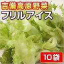 【岡山県産】 フリルアイス ● 10 P ●