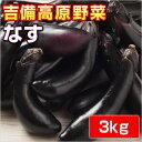 【訳あり】岡山県産 吉備高原のなす 3kg(ナス・茄子・なすび)