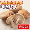 【岡山産】しいたけ (屋内菌床栽培) 100g