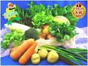 ■送料無料■翌日発送も出来ます!【吉備高原農家の野菜】大盛り15品野菜セット【税込】3000円【西日本】