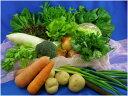 ■送料無料■【吉備高原農家の野菜】大盛り15品セット【税込】3000円【西日本】