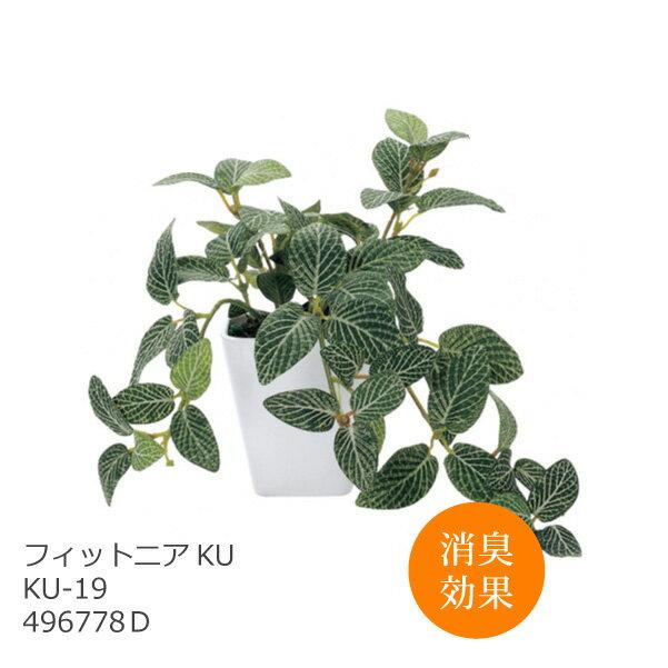 あす楽 光触媒 インテリアグリーン フィットニア KU KU-19 496778D 造花 観葉植物 人工 フェイクグリーン