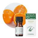 生活の木 マンダリン精油 3ml 天然精油 アロマ Mandarin