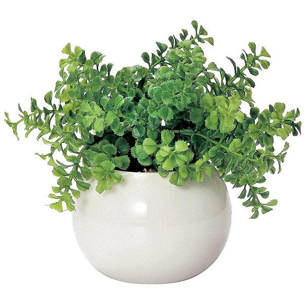 光触媒 インテリアグリーン ラウンドポット ファンシェイプ DR-502 496051D 観葉植物 フェイクグリーン 造花