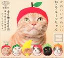 【コンプリート】ねこのかぶりもの第8弾 かわいいかわいい ねこフルーツちゃん★全6種セット