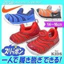 kidsstep:10005615