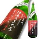 ● 上喜元 純米吟醸 仕込39号 生原酒 限定品 1800ml