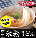 新感覚麺 本生 米粉うどん【6食入】【17B01】