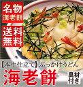 【1日2セット限定】亀城庵の海老と揚げ餅のぶっかけ4人前【送料無料】