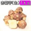 【条件付き送料無料】今話題の菊芋 北海道産 無農薬 化学肥料不使用 生 土付き 赤 1kg