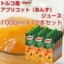 【1L×12本セット】 Tamekブランド アプリコット果汁入り飲料トルコのお土産・【あす楽対応】【10P18Jun16】