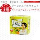 ダムトとうもろこしのヒゲ茶ティーパック60g(1.5g×40個)