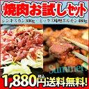 【送料無料】夏の君乃家お試しセット ジンギスカン300g+ミックス豚味噌ホルモン480g