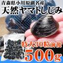 小川原湖産 天然ヤマトシジミ貝(冷凍)特大サイズ500g(30粒前後☆5〜6人前)