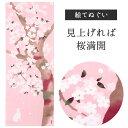 見上げれば桜満開【濱文様 てぬぐい】【絵てぬぐい】タペストリ...