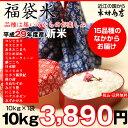 【福袋米】 白米 10kg【平成29年・滋賀県産】10kg×1袋でのお届けです♪】【送料無料