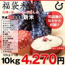 【福袋米】 白米 10kg【平成29年・滋賀県産】10kg×...