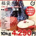 【福袋米 スペシャルパック】 白米5kg×2袋 【平成29年...