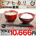 ヒノヒカリ 玄米 30kgもしくは精米済み白米27kg【平成29年:滋賀県産】【送料無料】(ゆうパックに限る)