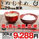 【初荷セール♪】きぬむすめ 環境こだわり米 玄米のまま30kgもしくは精米済み白米27kg【平成29