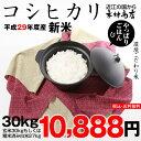 コシヒカリ 30kg 送料無料 新米 29年 玄米30kgまたは精米済み白米27kg【滋賀県産】
