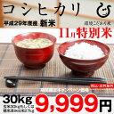 【新米!11月の特別米】コシヒカリ 環境こだわり米 玄米のまま30kgもしくは精米済み白米27kg【