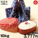 【平成最後のお米:特別価格】【福袋米】 白米 10kg 【平...